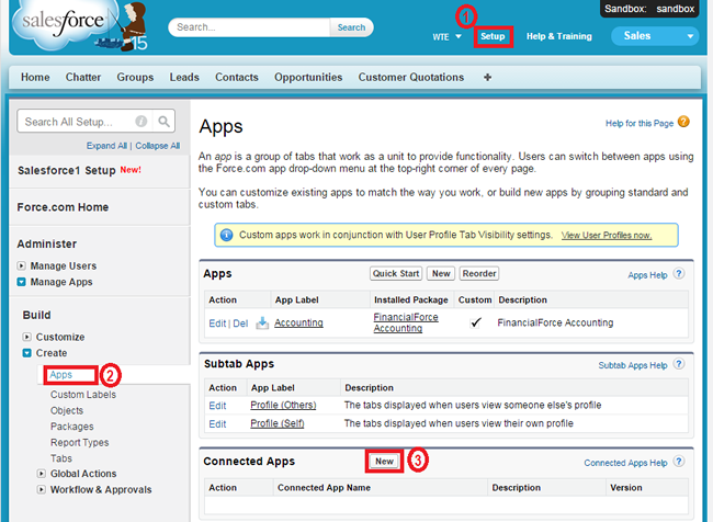 Salesforce REST API example | Web Traffic Exchange