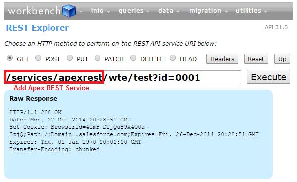 Salesforce REST API example | Web Traffic Exchange